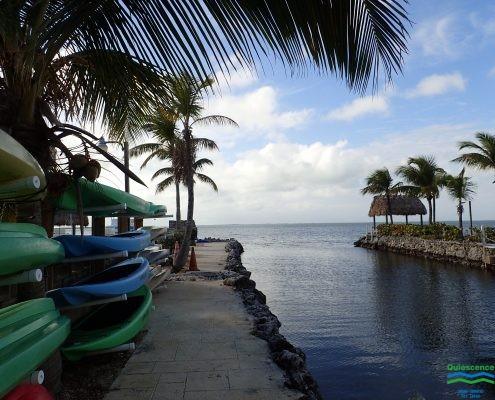 Kayak and Paddleboard Rental
